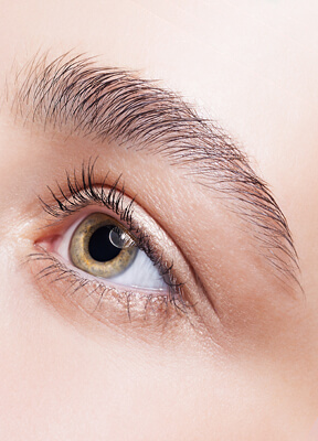 Augenbrauen Lifting